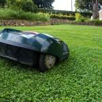 Potřebujete posekat trávník nebo vyčistit bazén? Pozvěte si k sobě robotické pomocníky