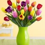 Květiny, které budou vašim Velikonocím slušet